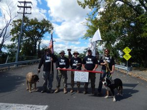 A group of veterans and their dogs