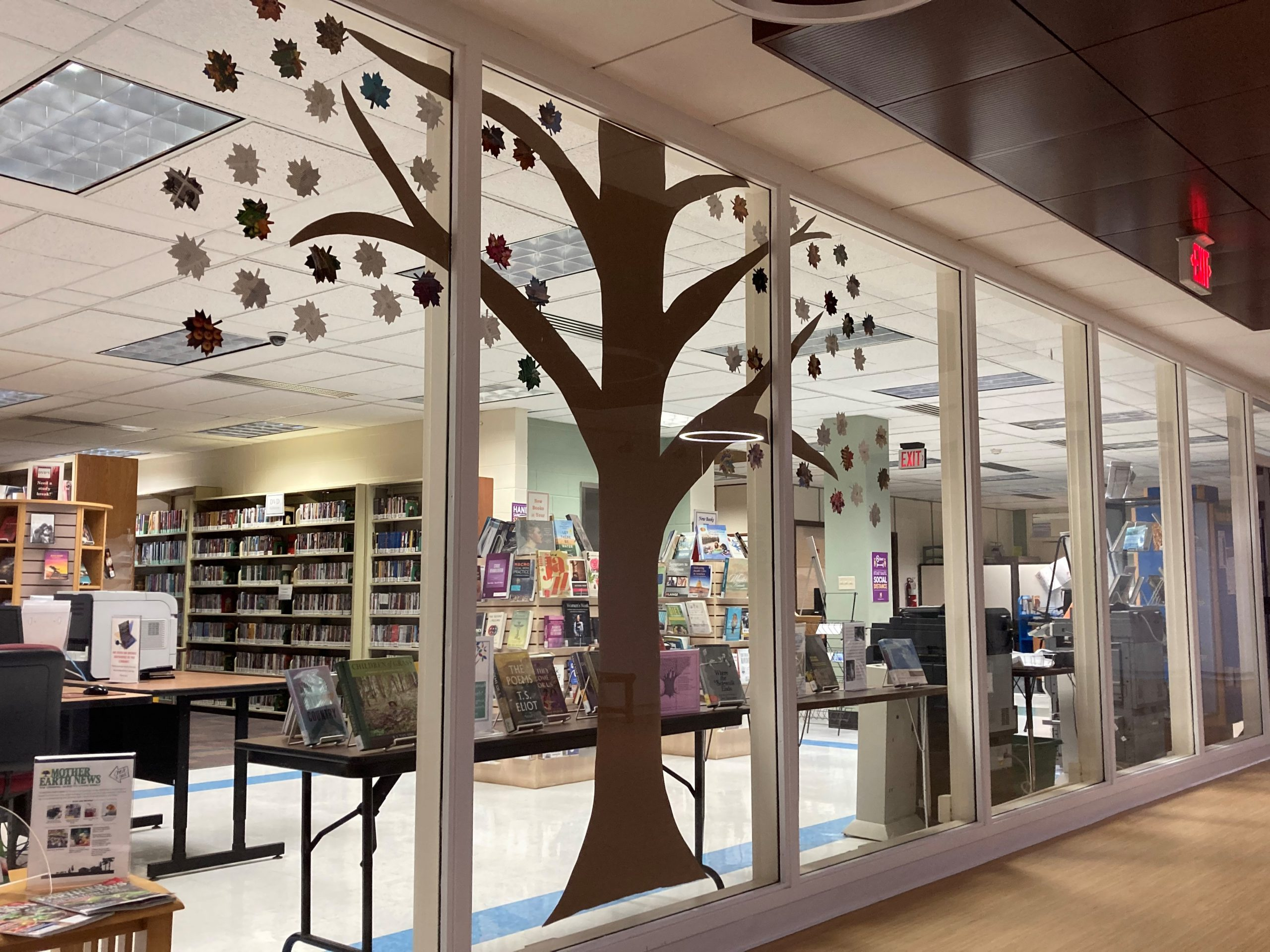 A construction paper tree with the names of poetry books on the leaves displayed in a library window